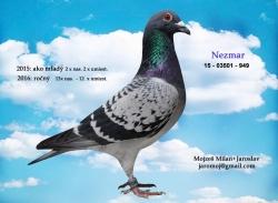 SK-2015-03501-949 - Mojzeš Milan