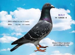 CZ-2014-0334-6 - Mojzeš Milan