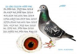 SK-2011-01104-488 - Somora Jozef+Rudolf