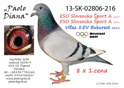 SK-2013-02806-216 - Peter Grék