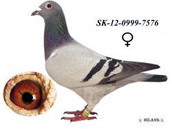 SK-2012-0999-7576 - Luhový Miroslav