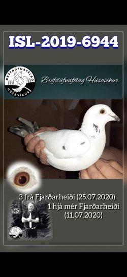 IS-2019-BDFI-6944 - Guðmundur Þráinn Kristjánsson