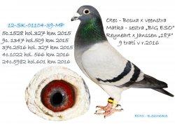 SK-2012-01104-39 - Somora Jozef+Rudolf