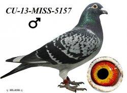 CU-2013-MISS-5157 - Blahovský Milan +Dávid