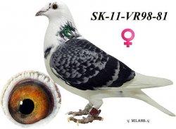 SK-2011-VR98-81 - Blahovský Milan +Dávid