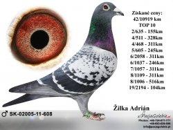 SK-2011-02005-608 - Žilka Adrián