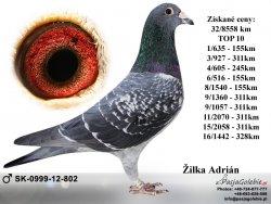 SK-2012-0999-802 - Žilka Adrián
