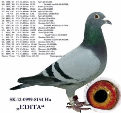 SK-2012-0999-8154