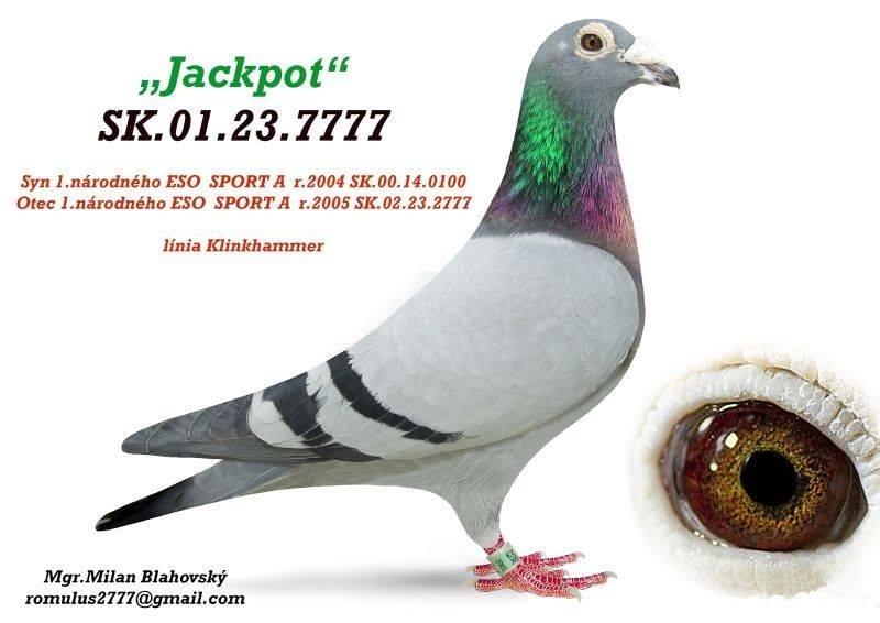 SK-2001-23-7777
