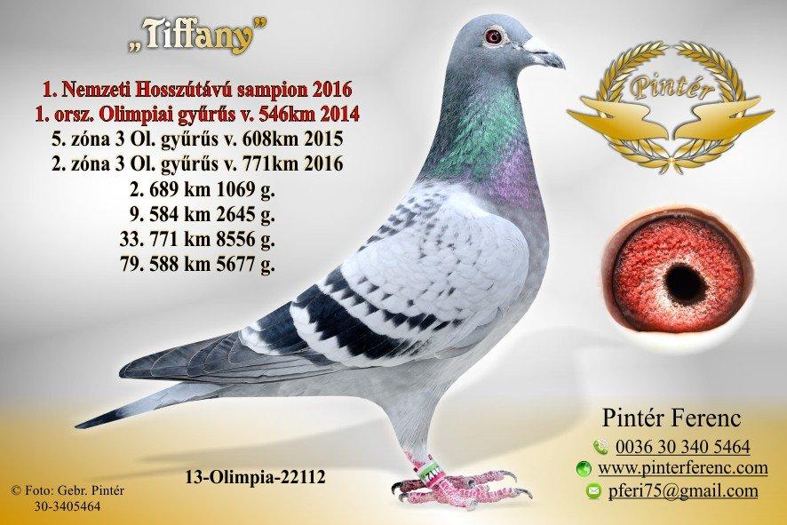 HU-2013-O-22112