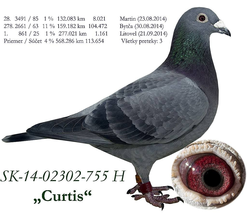 SK-2014-02302-755