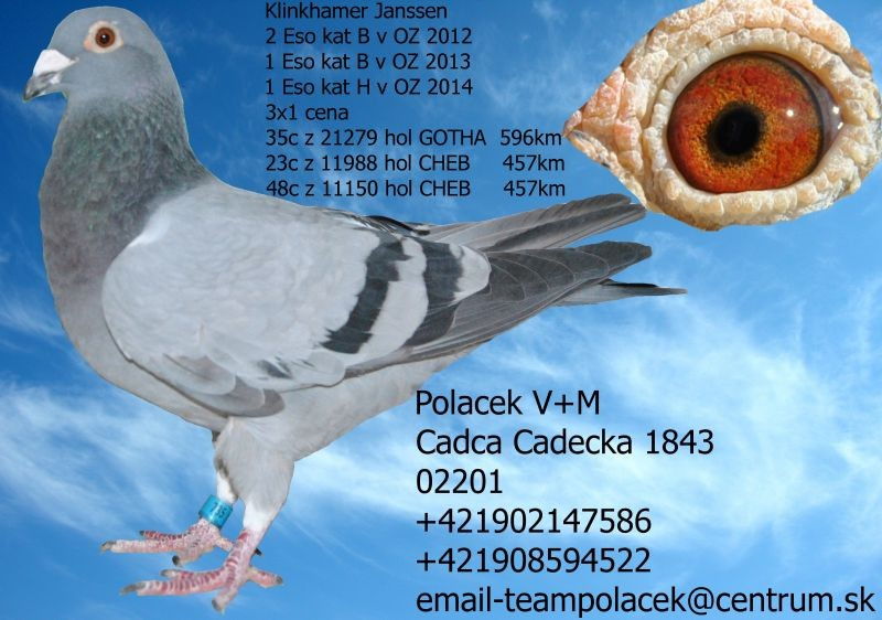 SK-2009-01603-735