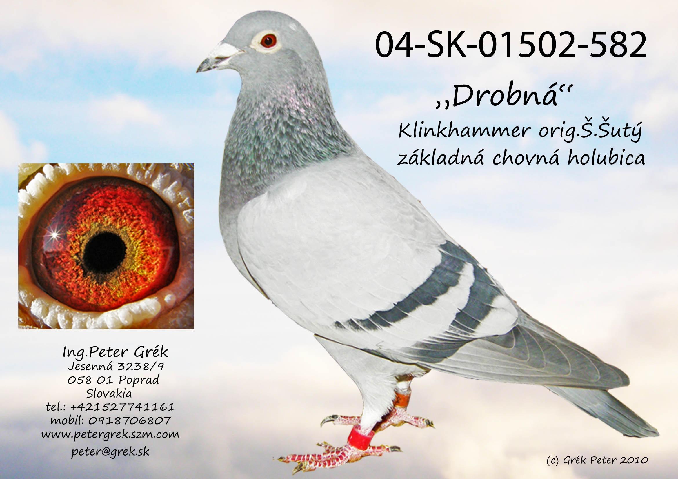 SK-2004-01502-582