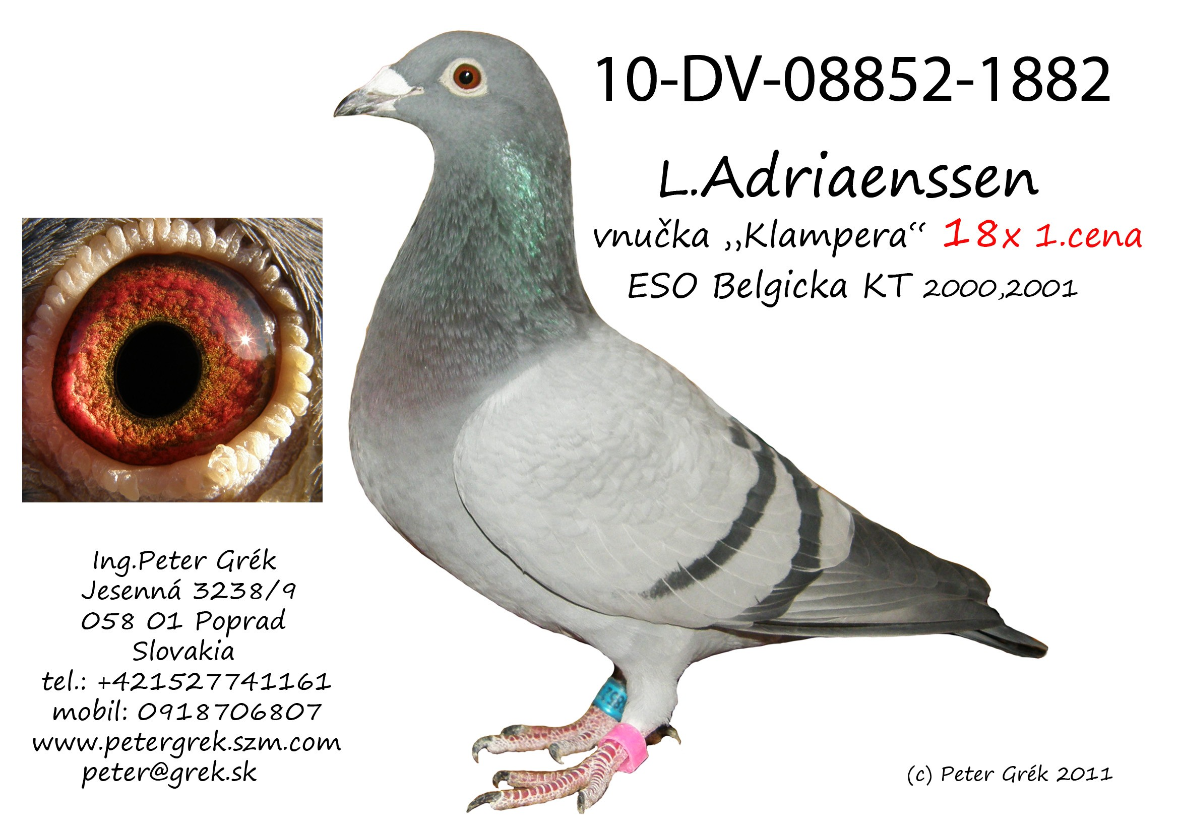 DV-2010-08852-1882